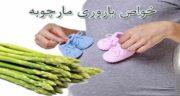 مارچوبه و بارداری ؛ تاثیر مصرف مارچوبه در زمان بارداری
