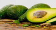 مضرات آووکادو چیست ؛ مصرف میوه آووکادو چه عوارضی برای بدن دارد