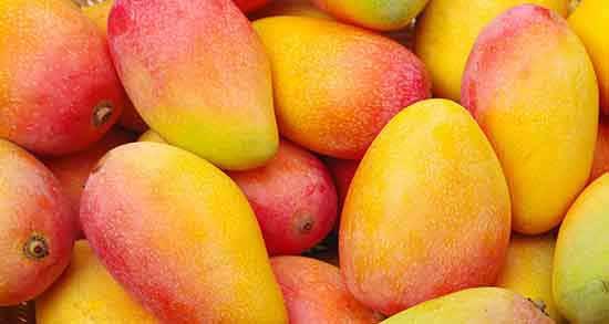 مضرات انبه برای کبد ؛ استفاده از میوه انبه برای کبد چه ضرری دارد
