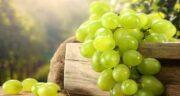 مضرات انگور کشمشی ؛ چه کسانی نمی توانند انگور کشمشی بخورند