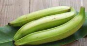 مضرات موز سبز ؛ آیا می دانید خوردن موز سبز چه ضرری برای بدن دارد