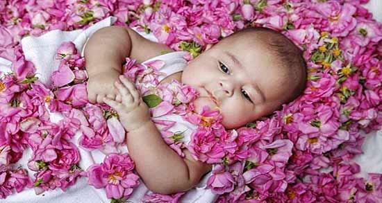 مضرات گلاب برای کودکان ؛ خطرات مصرف گلاب برای بچه ها و کودکان زیر 2 سال