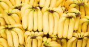 موز و و معده درد ؛ بایدها و نبایدهای مصرف میوه موز برای مشکلات معده