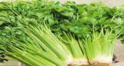 کرفس برای زن باردار ؛ کرفس از سبزیجات هایی است که مقدار فیبر زیادی دارد