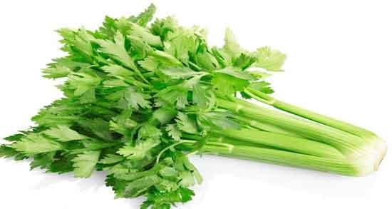 خواص کرفس در دوران بارداری ؛ این سبزی یک ادرارآور طبیعی است و به دفع آب اضافی کمک میکند