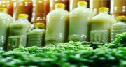 آبغوره اسیدی است یا قلیایی ؛ نحوه مصرف صحیح آبغوره برای کاهش چربی