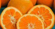 تعبیر خواب درخت نارنج و پرتقال ، معنی دیدن درخت نارنج و پرتقال در خواب چیست