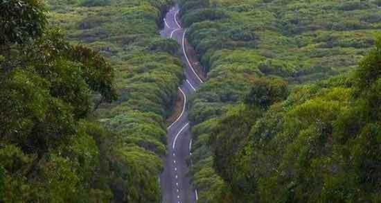 تعبیر خواب جاده پر پیچ و خم ، معنی دیدن جاده پر پیچ و خم در خواب های ما چیست