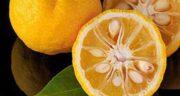 تعبیر خواب خوردن نارنج ، معنی خوردن نارنج در خواب های ما چیست
