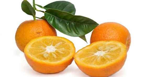 تعبیر خواب خوردن نارنج شیرین ، معنی خوردن نارنج شیرین در خواب چیست