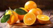 تعبیر خواب نارنج از درخت چیدن ، معنی نارنج از درخت چیدن در خواب چیست