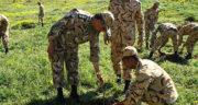 تعبیر خواب سربازی رفتن معشوق ، معنی سربازی رفتن معشوق در خواب چیست