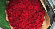تعبیر خواب شاخه گل رز ، معنی دیدن شاخه گل رز در خواب های ما چیست