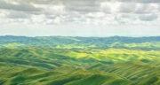تعبیر خواب تپه سبز