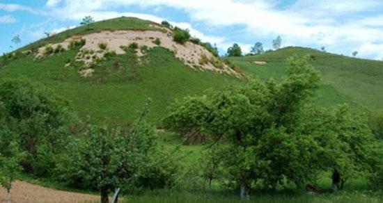 تعبیر خواب تپه سرسبز ، معنی دیدن تپه سرسبز در خواب های ما چیست