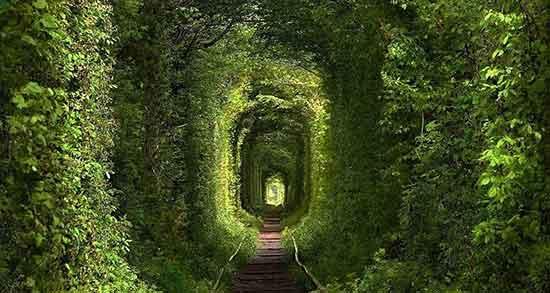 تعبیر خواب تونل قطار ، معنی دیدن تونل قطار در خواب های ما چیست