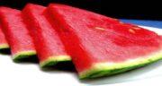 خواص آب هندوانه در بدنسازی ؛ به کم شدن اشتها کمک بزرگی می کند