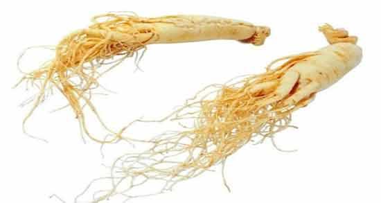 جینسینگ برای کبد ؛ گیاهی معجزه گر برای درمان بیماری کبد