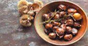 خواص بلوط برای دام ؛ استفاده از میوه بلوط برای تغذیه زمستانی دام ها