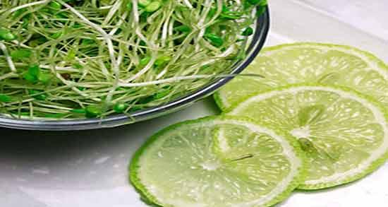 خواص جوانه گندم و لیمو ترش ؛ همه چیز درباره مصرف جوانه گندم با لیمو ترش