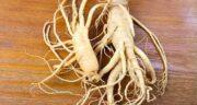 خواص جینسینگ در باروری ؛ افزایش قدرت باروری با خوردن جینسینگ
