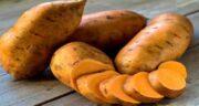 خواص سیب زمینی شیرین برای مو ؛ تقویت موها با خوردن سیب زمینی شیرین