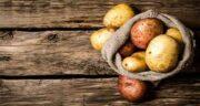 خواص سیب زمینی و عسل برای پوست ؛ معرفی ماسکی عالی برای پوست