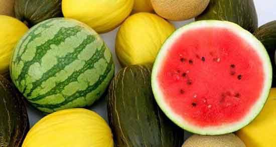 خواص هندوانه و خربزه ؛ بررسی خاصیت میوه های هندوانه و خربزه