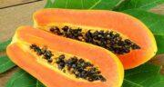 خواص پاپایا سبز ؛ میوه گرمسیری پاپا و فوایدش برای سلامتی بدن
