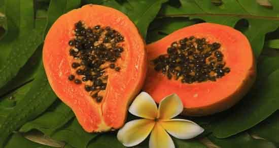 خواص پاپایا و دیابت ؛ تنظیم قند خون افراد دیابتی با خوردن میوه پاپایا