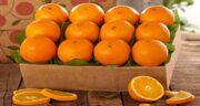 خواص پرتقال برای چشم ؛ خوردن پرتقال برای درمان بیماری چشم