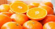 خواص پرتقال برای کبد چرب ؛ درمان بیماری کبد چرب با خوردن پرتقال