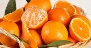 خواص پرتقال و نارنگی ؛ بررسی ارزش غذایی و خواص پرتقال با نارنگی