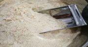 خواص پودر جوانهشبدر ؛ خاصیت پودر جوانه شبدر برای کم خونی و ناراحتی کبد