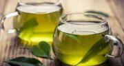 خواص چای سبز برای ریه ؛ تاثیرات نوشیدن چای سبز برای ناراحتی ریه