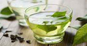 خواص چای سبز برای مو ؛ تقویت و افزایش رشد مو با مصرف چای سبز