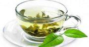 خواص چای سبز در درمان کبد چرب ؛ فواید خوردن چای سبز برای بیماری کبد چرب