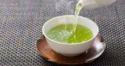 خواص چای سبز در شیردهی ؛ تاثیرات خوردن چای سبز برای مادر شیرده