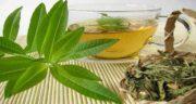 خواص چای سبز و به لیمو ؛ دمنوش چای سبز و به لیمو برای سلامتی