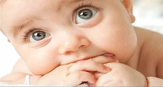زیتون و رنگ چشم جنین ؛ تاثیر استفاده از زیتون برای روشن شدن رنگ چشم نوزاد