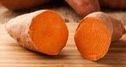سیب زمینی شیرین در ایران وجود دارد ؛ کاشت و پرورش سیب زمینی شیرین در ایران