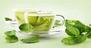 طبع چای سبز ؛ آیا می دانید طبیعت چای سبز چگونه است