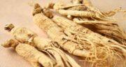 طریقه مصرف جینسینگ با عسل ؛ روش تهیه معجون جینسینگ و عسل