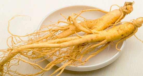 طریقه مصرف جینسینگ ؛ استفاده از ساقه، برگ و ریشه جیسینگ برای سلامتی