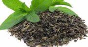 طریقه مصرف چای سبز ؛ برای بهره بردن از خواص چای سبز آن را چگونه مصرف کنیم