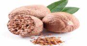 فواید جوز هندی برای لاغری ؛ طریقه خوردن جوز هندی برای کاهش وزن