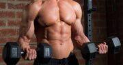 فواید جینسینگ برای بدنسازی ؛ خاصیت خوردن جینسینگ برای تقویت عضله
