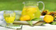 مضرات به لیمو برای کودکان ؛موثر در خلط آوری و سرماخوردگی