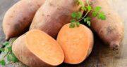 مضرات سیب زمینی شیرین ؛ عوارض استفاده از سیب زمینی شیرین برای بدن