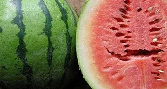 مضرات هندوانه ریشه دار ؛ خوردن هندوانه ریشه دار برای سلامتی مضر است
